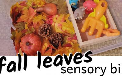 Fall Leaves Sensory Bin