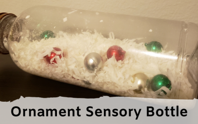 Ornament Sensory Bottle